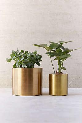 LARGE METAL GOLD CACTUS SUCCULENT POT PLANTER  INDOOR PLANT STAND